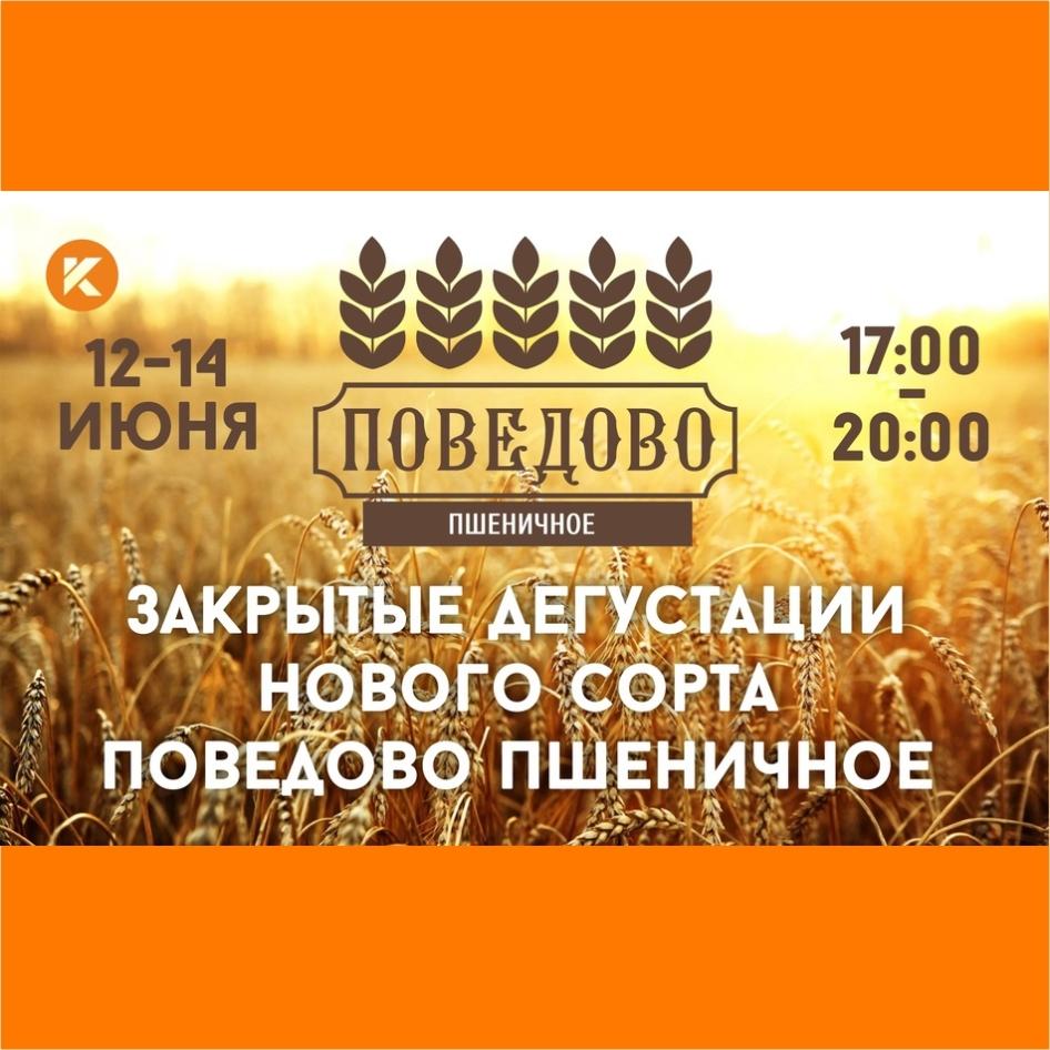 Новый сорт - Поведово Пшеничное! 